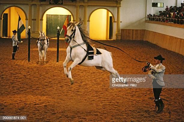 Spain, Jerez de la Frontera, School of Equestraian Art, performance.