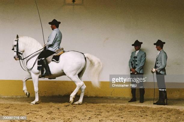 Spain, Jerez de la Frontera, School of Equestrian Art,man riding horse