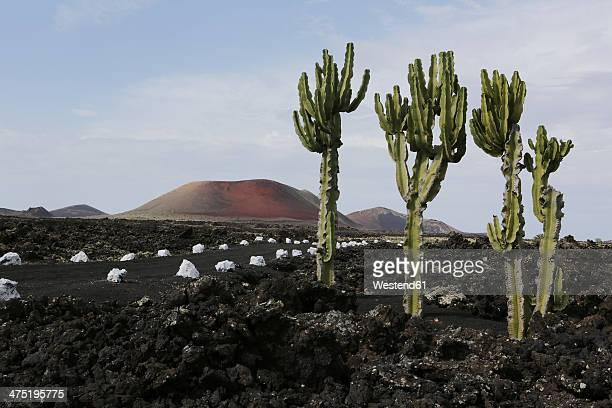 Spain, Lanzarote, Volcanos