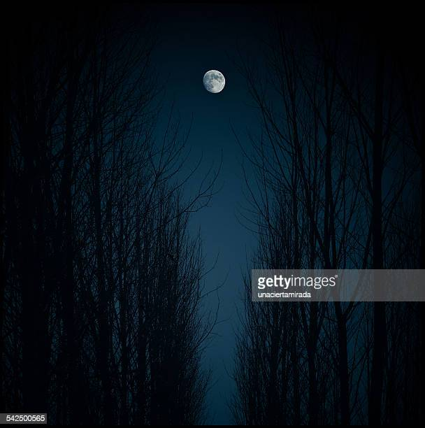 Spain, Madrid, Moon