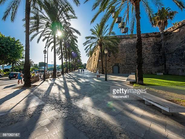 spain, majorca, palma, historic town canal torrent de sa riera - palma de mallorca bildbanksfoton och bilder