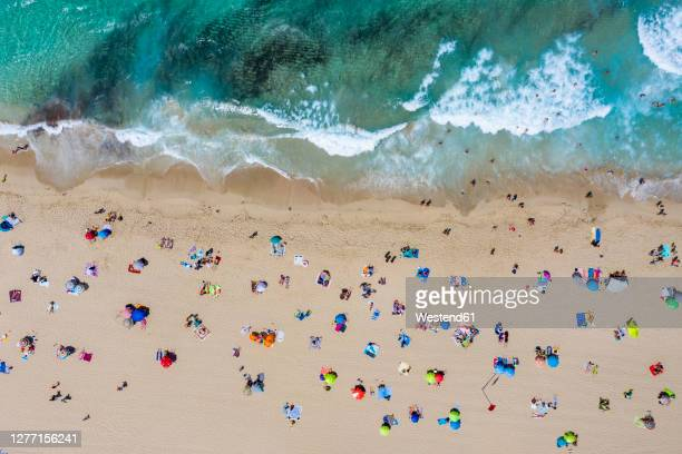 spain, mallorca, cala mesquida, aerial view of people relaxing on cala agulla beach in summer - majorca stock pictures, royalty-free photos & images