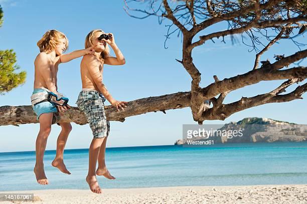 Spain, Mallorca, Children sitting on tree