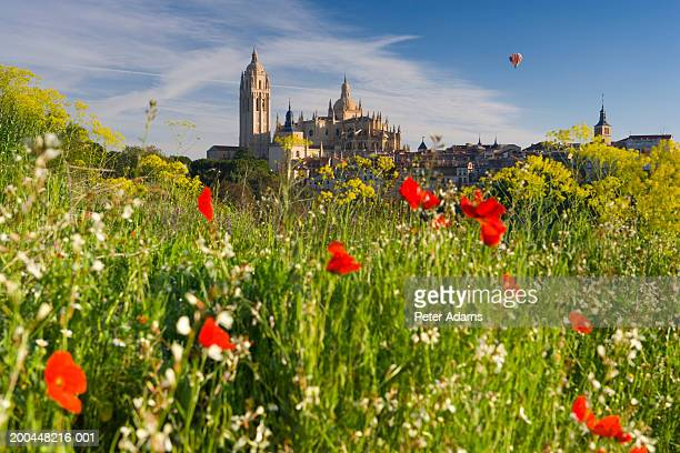 spain, segovia, segovia cathedral, field in foreground - segovia stock pictures, royalty-free photos & images