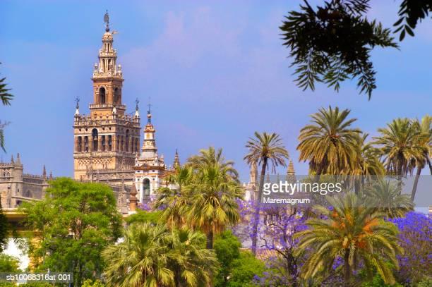 spain, seville, giralda tower from guadalquivir river - la giralda fotografías e imágenes de stock