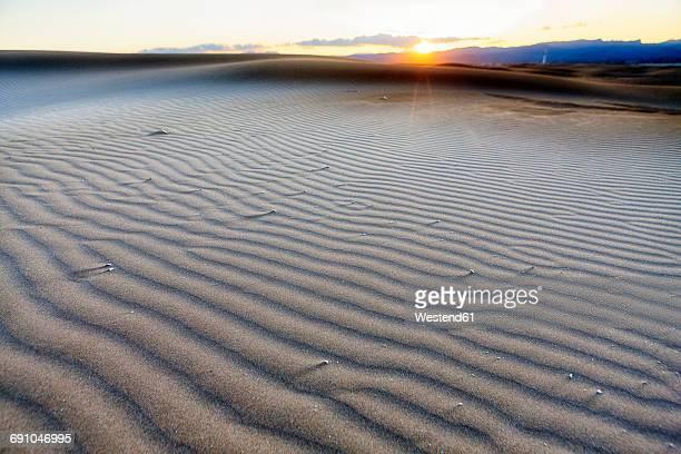 spain, tarragona, ebro delta, dune at sunset - delta del ebro fotografías e imágenes de stock