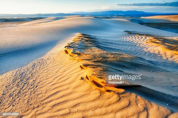 spain, tarragona, ebro delta, dune at twilight - delta del ebro fotografías e imágenes de stock