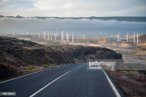 Spain, Tenerife, empty country road with wind wheels in the background