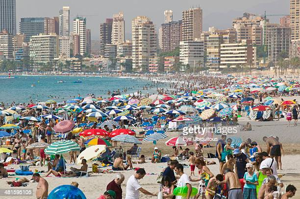 Spain Valencia Province Costa Blanca Benidorm View of crowded beach lined with high rise hotels