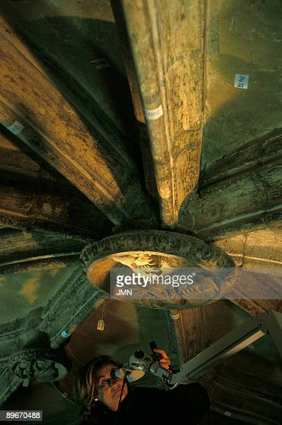 Spain Vitoria Cathedral of Santa Maria Central Portico Restoring the vaults