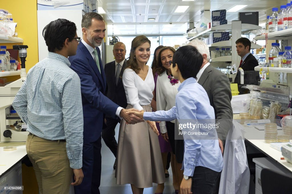 Spain's King Felipe VI (2L) and Queen Letizia (3R) greet research scientists during their visit to the Francis Crick Institute in central London on July 14, 2017, the third and final day of the Spanish royals' state visit. / AFP PHOTO / POOL / NIKLAS HALLE'N