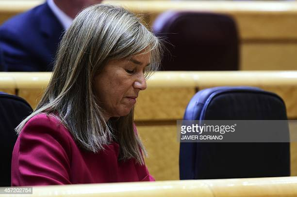 Spain's Minister of Health Social Services and Equality Ana Mato attends a control session at the Senate in Madrid on October 14 in the wake of the...