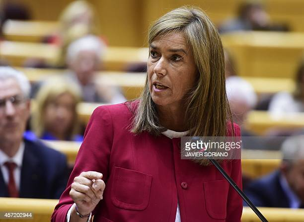 Spain's Minister of Health Social Services and Equality Ana Mato speaks during a control session at the Senate in Madrid on October 14 in the wake of...