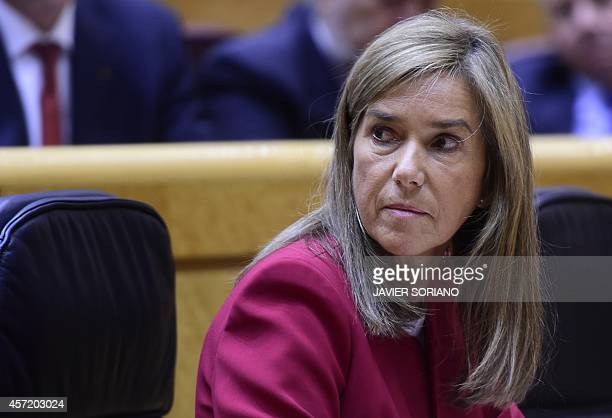 Spain's Minister of Health Social Services and Equality Ana Mato looks on during a control session at the Senate in Madrid on October 14 in the wake...