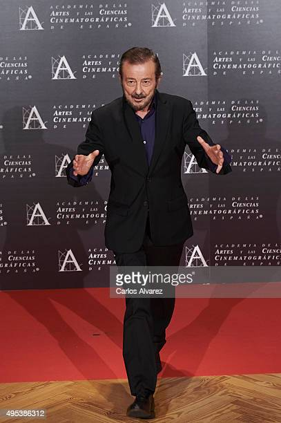 Spanish actor Juan Diego attends the Golden Medal 2015 ceremony at Academia de Cine on November 2 2015 in Madrid Spain