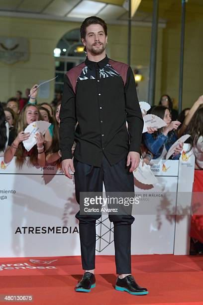 "Spanish actor Luis Fernandez attends the ""Carmina y Amen"" premiere during the 17th Malaga Film Festival at the Cervantes Theater on March 22, 2014 in..."