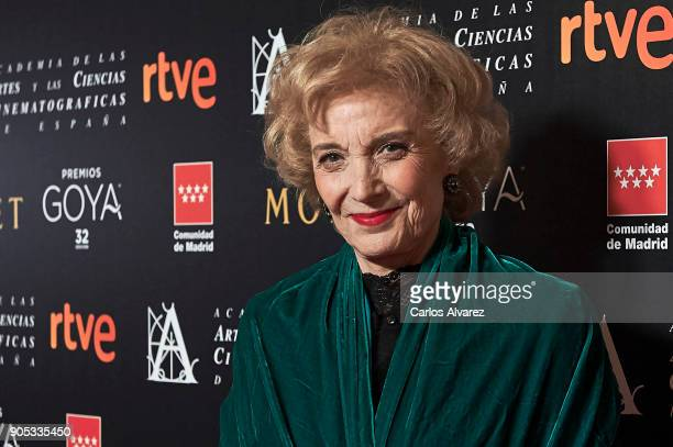 Spanish actress Marisa Paredes attends the Goya cinema awards candidates 2018 meeting at Casa de Correos on January 15 2018 in Madrid Spain