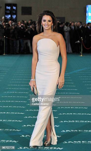Spanish actress Penelope Cruz attends Goya awards 2010 photocall at 'Palacio de Congresos' on February 14 2010 in Madrid Spain
