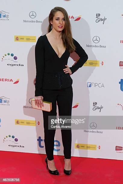 Spanish actress Silvia Alonso attends the Jose Maria Forque awards 2013 at the Palacio Municipal de Congresos on January 13 2014 in Madrid Spain