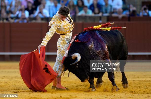 Spanish bullfighter Alfonso Cadaval performs a pass with 'muleta' during a bullfight at the Real Maestranza bullring in Sevilla on September 30 2018...