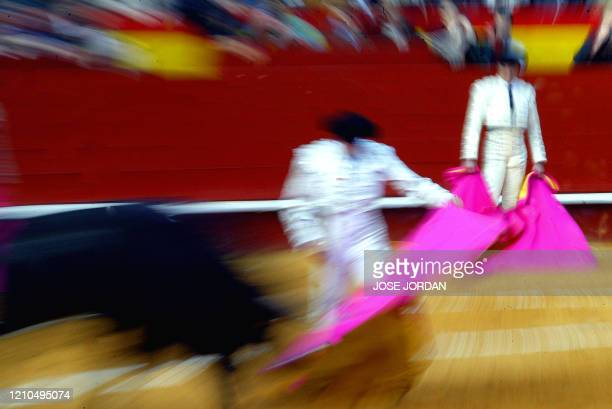 Spanish bullfighter Enrique Ponce gives a pass to his first bull during the Fallas bull festiva in Valencia 16 March 2005 AFP PHOTO JOSE JORDAN