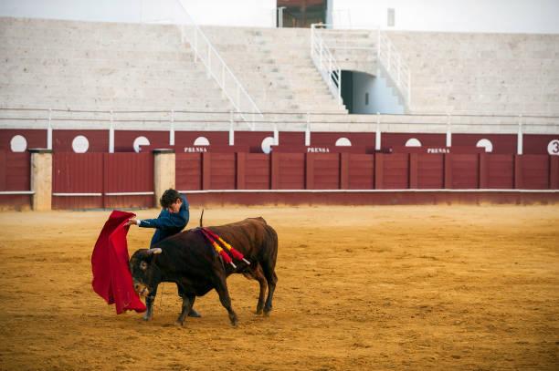 ESP: Bullfighting Masterclass in Empty Stadium in Spain