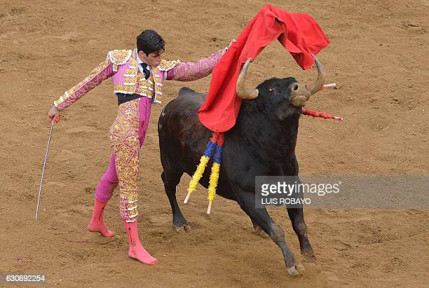 Spanish bullfighter Lopez Simon performs during a bullfight at the Canaveralejo bullring in Cali department of Valle del Cauca Colombia on December...