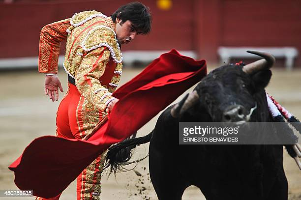 Spanish bullfighter Miguel Angel Perera performs during the 'Senor de los Milagros' festival at the Acho bullring in Lima on November 17 2013 AFP...