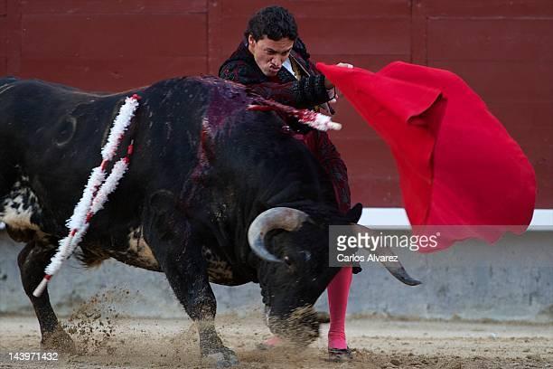 Spanish bullfighter Oliva Soto performs at 'Las Ventas' bullring on May 6 2012 in Madrid Spain