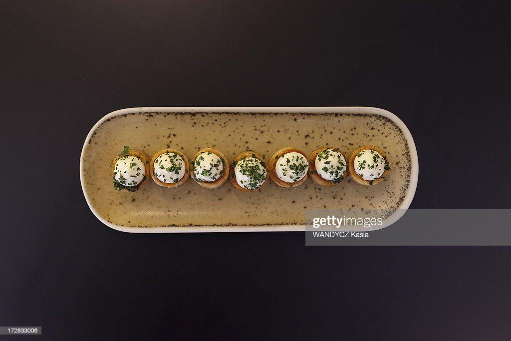 Chef Sergi Arola Portrait Session : Fotografía de noticias