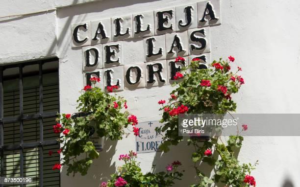 Spanish Cities, Calleja de las Flores streets ceramic sign, Cordoba