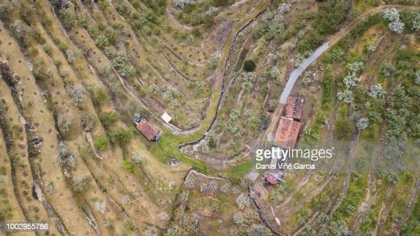 spanish countryside aerial shot - estremadura stock-fotos und bilder