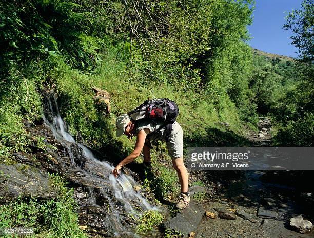 spanish hiker drinking from stream - alamany fotografías e imágenes de stock
