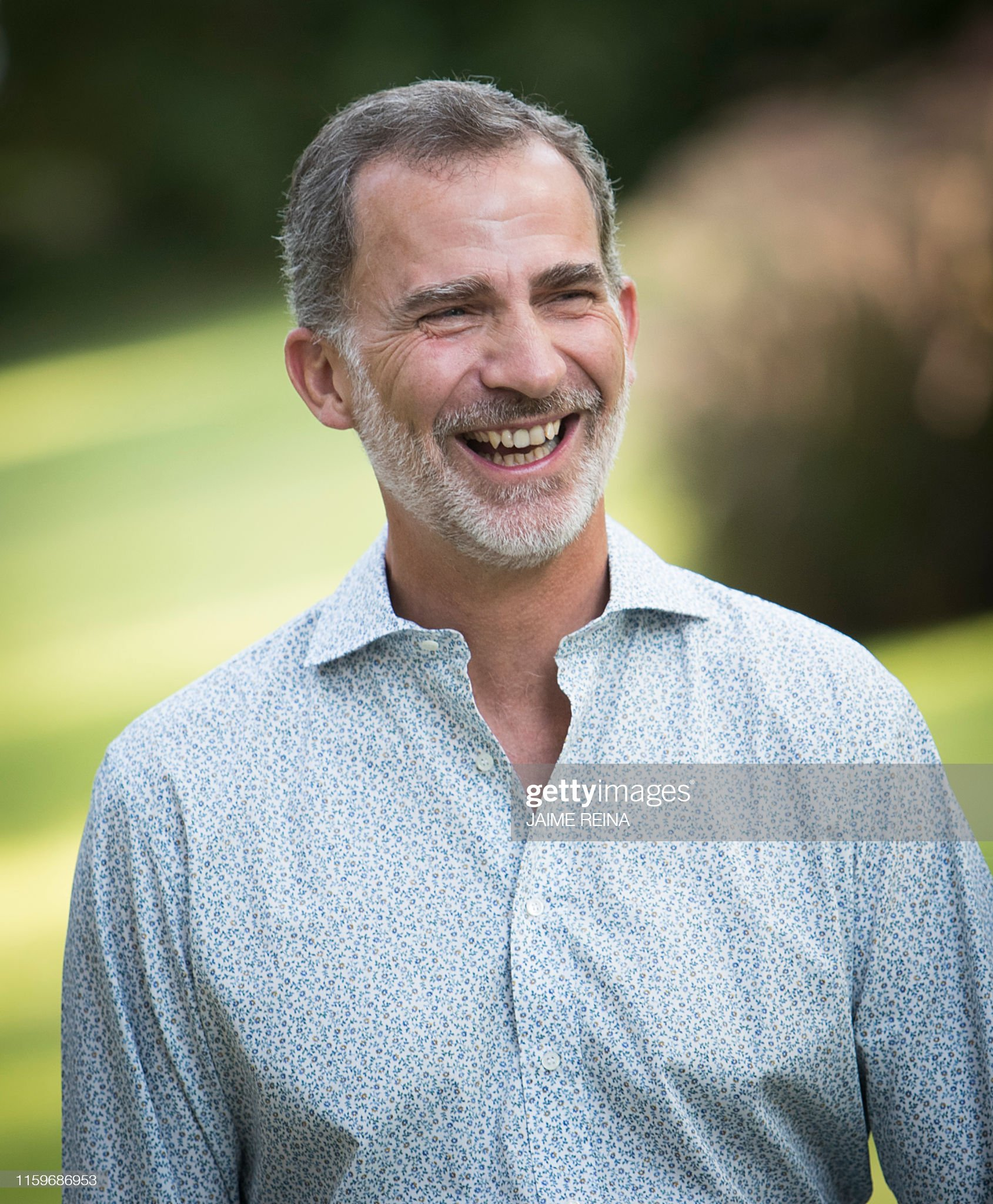 spanish-king-felipe-vi-laughs-as-he-poses-in-the-gardens-at-the-on-picture-id1159686953