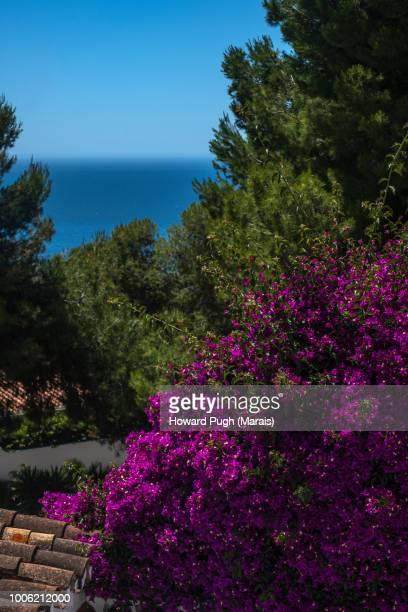 Spanish Land & Seascapes