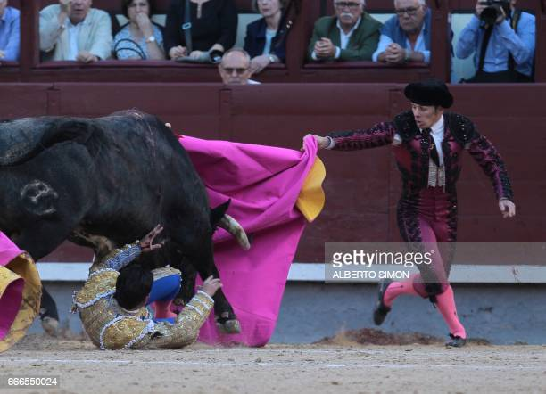 Spanish matador Alberto Aguilar rolls on the ground during the Domingo de Ramos bullfight at Las Ventas bullring in Madrid on April 9 2017 / AFP...