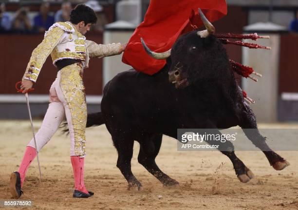 Spanish matador Alberto Lopez Simon performs a pass on a bull during a bullfight at Las Ventas bullring in Madrid on September 30 2017 / AFP PHOTO /...
