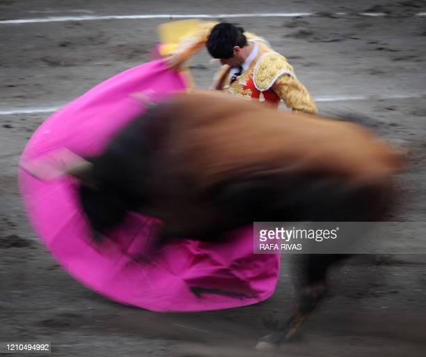Spanish matador Enrique Ponce gives a capote pass to his first El Ventorrillo fighting bull during a corrida at the Vista Alegre bullring in Bilbao...