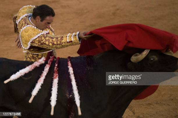 Spanish matador Enrique Ponce performs a pass on a bull during a bullfight at Osuna´s bullring on August 1 2020