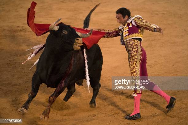 TOPSHOT Spanish matador Enrique Ponce performs a pass on a bull during a bullfight at Osuna´s bullring on August 1 2020