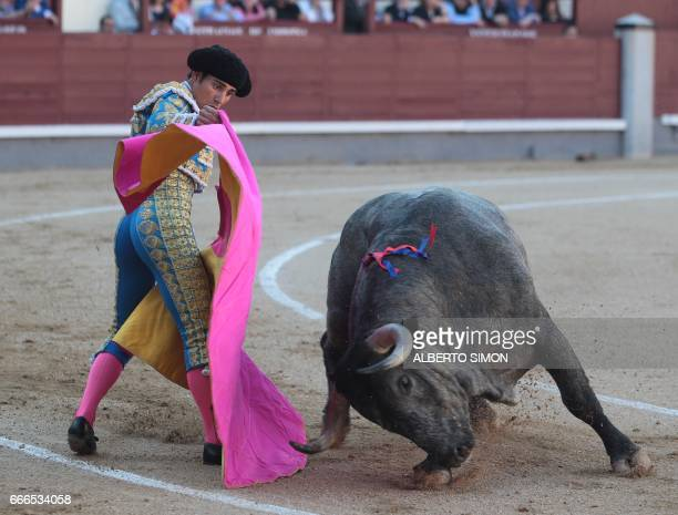 Spanish matador Gomez del Pilar performs a pass on a bull during the Domingo de Ramos bullfight at Las Ventas bullring in Madrid on april 9 2017 /...