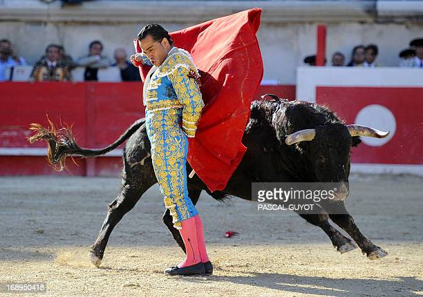 Spanish matador Ivan Fandino makes a muleta pass on a Jandilla's fighting bull on May 17 2013 during the Nimes Pentecost Feria in Nimes southwestern...
