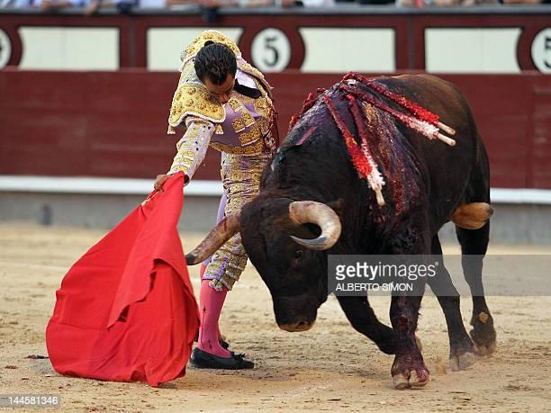 Spanish matador Ivan Fandino makes a pass to a bull at the Las Ventas bullring during the San Isidro Feria on May 16 2012 in Madrid AFP PHOTO /...