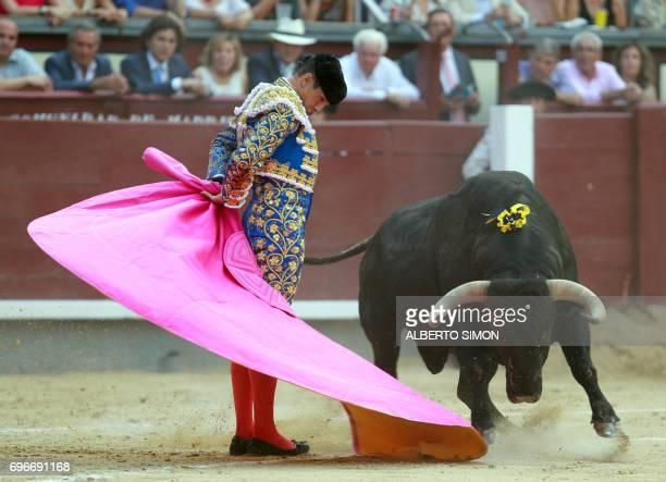 Spanish matador Jose Maria Manzanares performs a 'Veronica' pass on a bull during the 'Corrida de Beneficencia' at Las Ventas bullring in Madrid on...