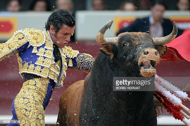 Spanish matador Jose Miguel Arroyo also known as Joselito performs a pass on a Garcigrande fighting bull during the last day of the Feria of Istres...