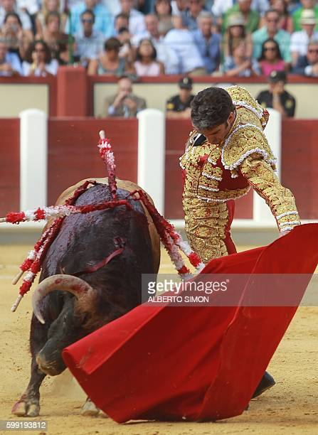 Spanish matador Jose Tomas performs a pass on a bull during the Victor Barrio tribute bullfight at the Paseo de Zorrilla bullring in Valladolid on...