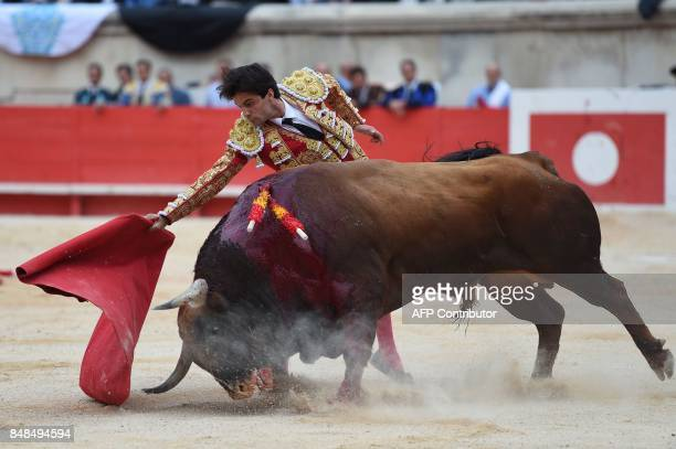 Spanish matador Juan Del Alamo makes a muleta pass on a Fuente Ymbro fighting bull on September 17 2017 during the Nimes Vendages Feria in Nimes...