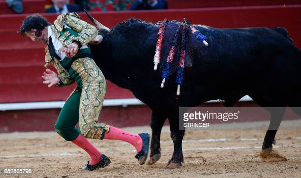 Spanish matador Juan Jose Padilla is gored by a bull during a bullfight of the Fallas Festival at the bullring of Valencia on March 12 2017 / AFP...