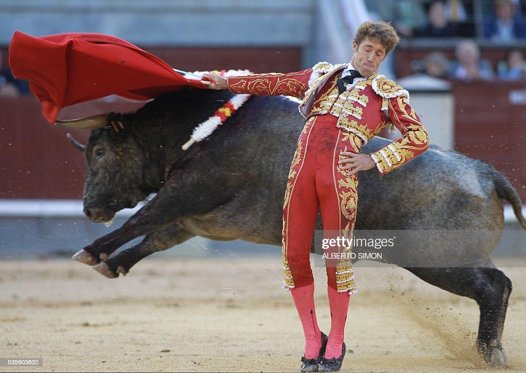 Spanish matador Manuel Escribano performs a pass on a bull during the San Isidro bullfight festival at Las Ventas bullring in Madrid on May 30, 2016. / AFP / ALBERTO