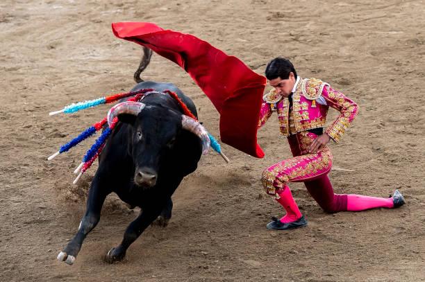 ESP: Semi-finals Tournament For Teenage Bullfighters In Burgos